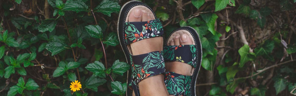 Les chaussures vegan made in Insecta