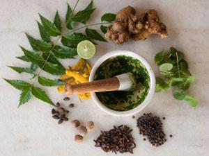 Pukka crée des infusions de plantes médicinales de l'Ayurveda