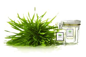Collection de parfum bio Purs extrait de Nature par Honoré des Prés